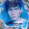 Braynin - Butterflies artwork