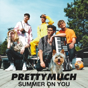 Summer on You - Single Mp3 Download