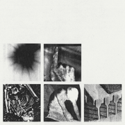 Bad Witch - Nine Inch Nails - Nine Inch Nails