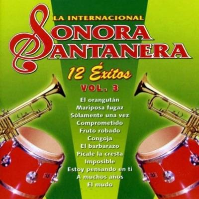 12 Éxitos la Internacional Sonora Santanera, Vol. 3 - La Sonora Santanera