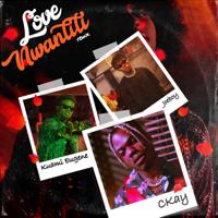 CKay - Love Nwantiti (ah ah ah) [feat. Joeboy & Kuami Eugene] [Remix] artwork
