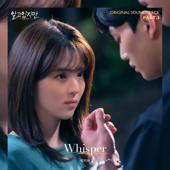 Whisper - 박지우