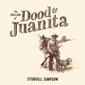 Sturgill Simpson/Willie Nelson - Juanita