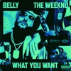 What You Want (feat. The Weeknd) - Single, Belly