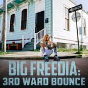 Karaoke (feat. Lizzo) - Big Freedia - Big Freedia