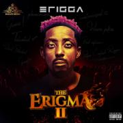 The Erigma II
