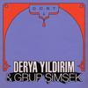 Derya Yildirim & Grup Simsek - Dost 1 - EP artwork