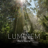 Download lagu Luminem - Climbing.mp3