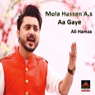 Mola Mera Ve Ghar Hove - Qasida Album 2016 by Ali Hamza on