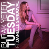 Burak Yeter - Tuesday (feat. Danelle Sandoval) artwork