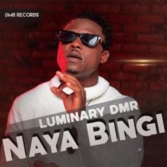 Naya Bingi - EP