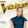 Brynn Cartelli - Skyfall (The Voice Performance)  artwork