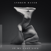In My Last Life-Andrew Bayer