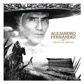 Alejandro Fernandez/Christian Nodal - Más No Puedo
