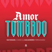 Amor Tumbado - Natanael Cano & Alejandro Fernández