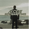 Akcent - How Many Times artwork