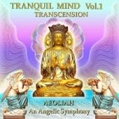 Tranquil Mind, Vol. 1: Transcension