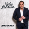 Nelis Leeman - Leugenaar kunstwerk