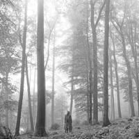 folklore - テイラー・スウィフト