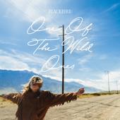 One of the Wild Ones - EP