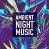 Ambient Night Music