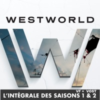 Télécharger Westworld, l'intégrale des saisons 1 et 2 (VF & VOST) - HBO Episode 115