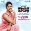 Meghalalo Harivillula From Deyyamtho Sahajeevanam Single