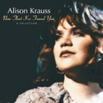 Alison Krauss & Union Station - When You Say Nothing At All