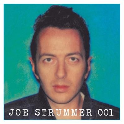 Joe Strummer & The 101ers, Joe Strummer, The 101ers