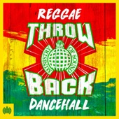 Various Artists - Throwback Reggae Dancehall (Continuous Mix 3)