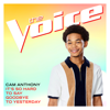 It s So Hard To Say Goodbye To Yesterday The Voice Performance - Cam Anthony mp3