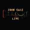 John Cale - Circus Live artwork