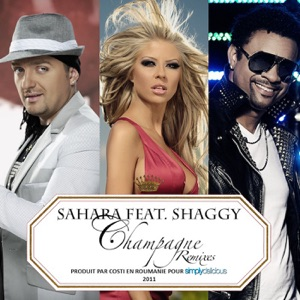Pure Pleasure - Shaggy Shaggy MP3 Download - APINAKAPINA COM