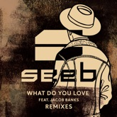 What Do You Love (feat. Jacob Banks) [Remixes]