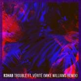 Trouble (feat. VÉRITÉ) [Mike Williams Remix] - Single