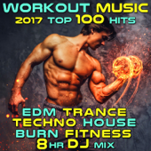 Workout Music 2017 Top 100 Hits EDM Trance Techno House Burn Fitness 8 Hr DJ Mix