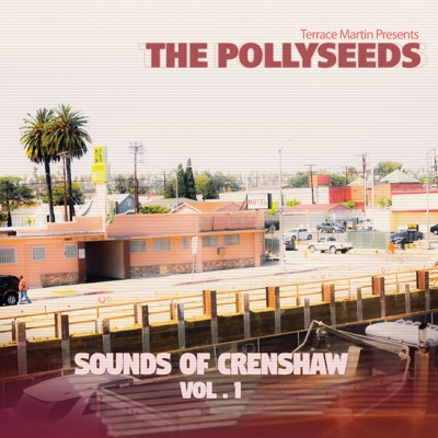 Sounds of Crenshaw, Vol. 1 - Terrace Martin Presents The Pollyseeds album