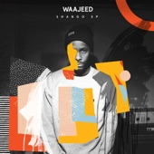 Waajeed - Better Late Than Never