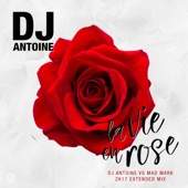 La Vie en Rose (DJ Antoine Vs Mad Mark 2k17 Extended Mix) - Single