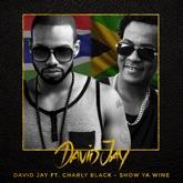 Show Ya Wine (feat. Charly Black) - Single