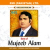Best Of Mujeeb Alam