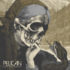 Live at Dunk!Fest 2016 - Pelican