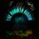 Various Artists - The Riibirth Riddim