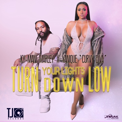 Turn Your Lights Down Low - Ky-Mani Marley & Yanique 'Curvy Diva' song