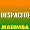 The Marimba Squad - Despacito (Marimba Remix) artwork