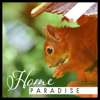 Home Paradise: Way to Rest, Beautiful Nature, Blissful Surrounding, Simple Path of Life, Emotional Symphony, Internal Silence - Healing Power Natural Sounds Oasis