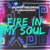 Fire In My Soul (feat. Shungudzo)