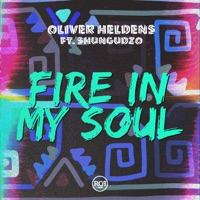 Fire in My Soul (Leandro Da Silva rmx) - OLIVER HELDENS - SHUNGUDZO