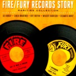 The Fire/Fury Records Story - Rarities Collection