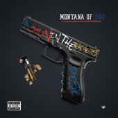 A Gun In The Teachers Desk-Montana of 300